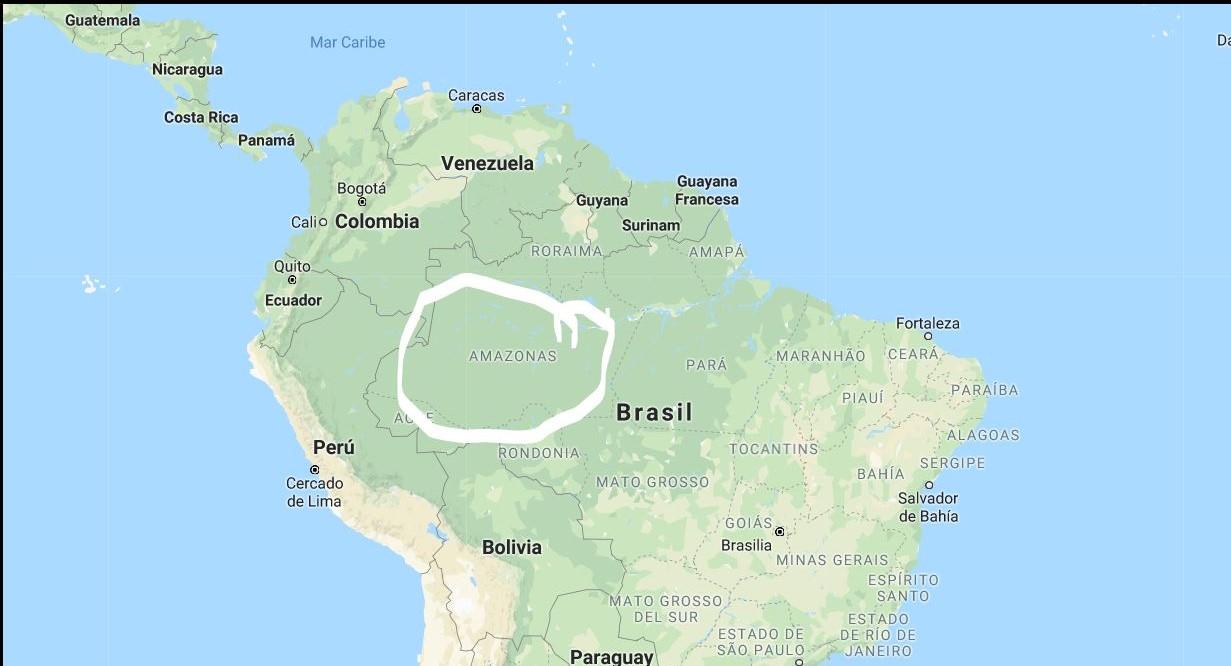 Región SVD Amazónica