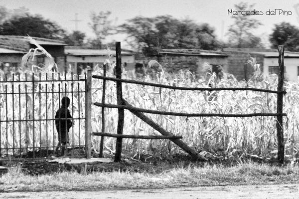 En cualquier lugar, en Kenia
