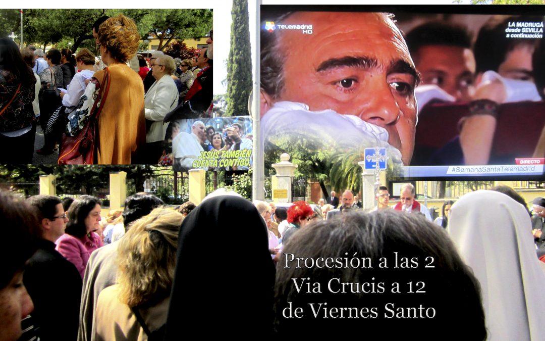 """Viernes Santo, Francisco: """"Jesús también cuenta contigo""""; Gregory Arockiam SVD: """"Misioneros Laicos SVD"""""""