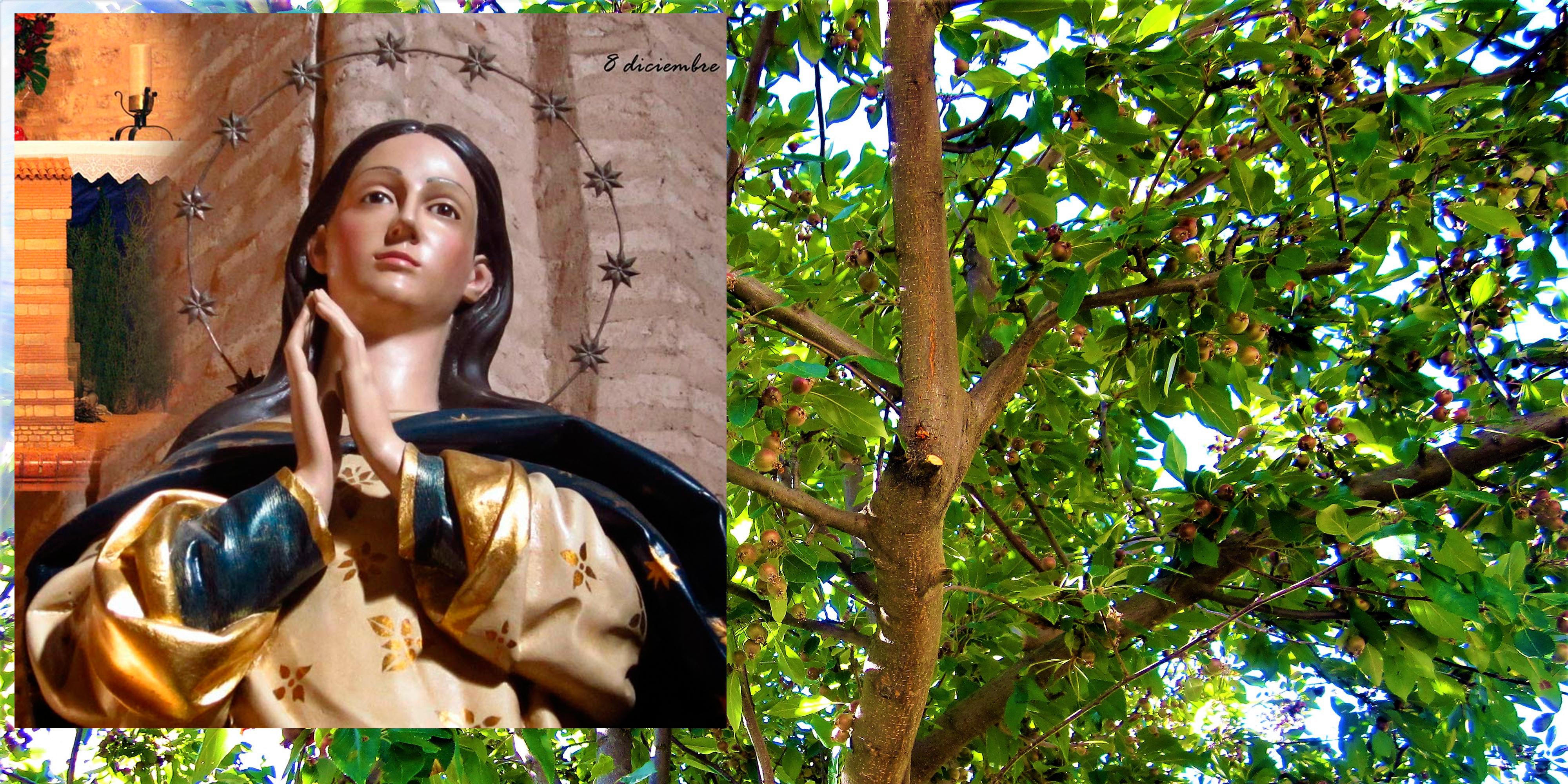 La Inmaculada en Niebla - Huelva