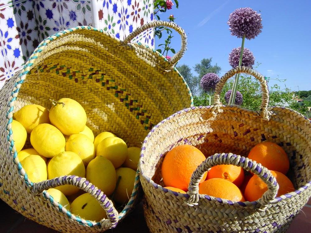 limones y naranjas de Niebla